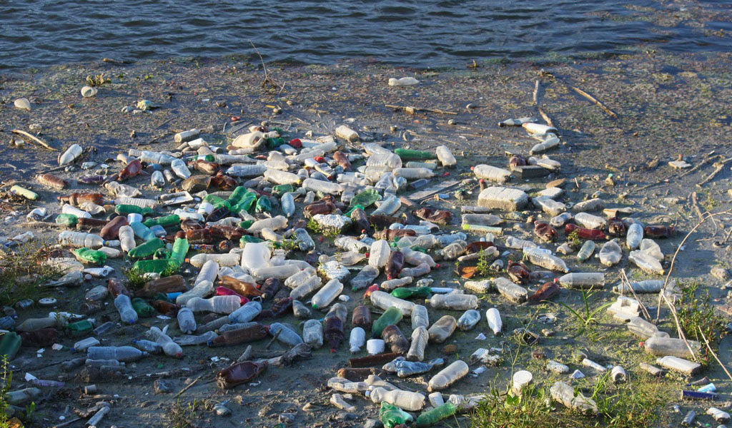 Plastic bottles and other plastic waste floating on the sea; the interventions to get clear plastic-free hydrosfere not yet started