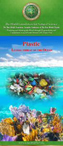 Brochure plastic lethal threat in the ocean
